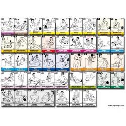 Fiche A4 - 42 tests musculaires du TFH (par méridien)