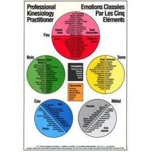 Poster des Emotions des 14 méridiens classés par les 5 éléments