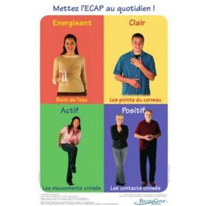 Poster ECAP Adultes