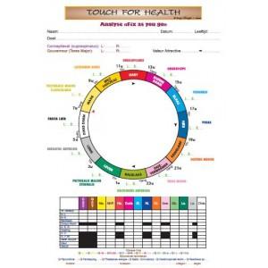A4 - Fiche de Protocole du TFH pour une équilibration en avançant des 14 musles