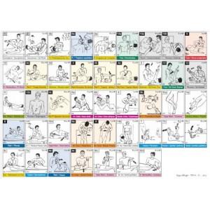 Fiche A4 des 14 tests musculaires du TFH 1 dans l'ordre de la roue
