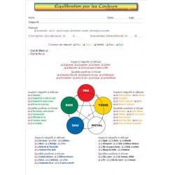 Equilibration par les couleurs des 5 éléments
