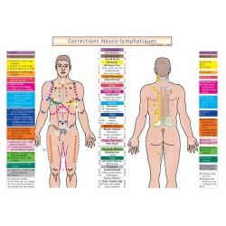 Fiche A4 - Points Neuro-Lympathiques du TFH