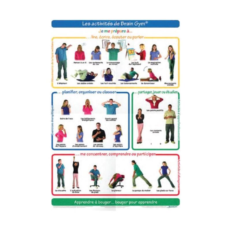 Poster 26 mouvements de Brain Gym Adulte (petit format)