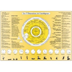 Fiche A4 - Techniques d'équilibration des 7dimensions de l'intelligence